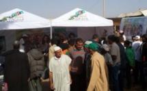 Les caravanes du recensement font le tour des moussems, marchés et douars